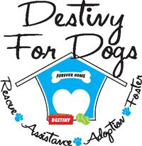 Destiny Logo 2 Badge