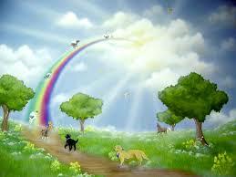 Rainbow Bridge 06